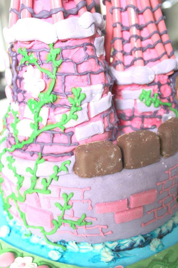 Castle Cake 9